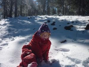 Mikkeline nyder sneen
