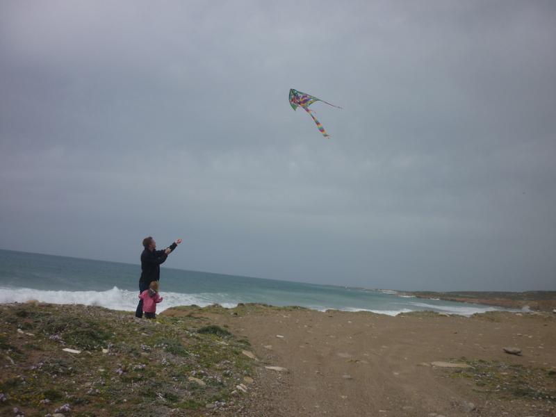 Flyvning med drager på stranden