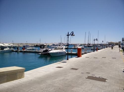 rejser til cypern