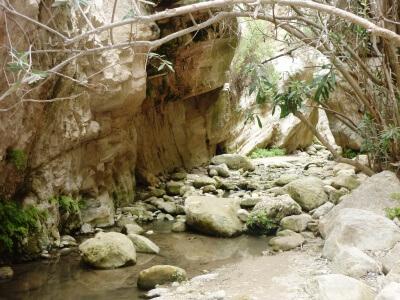 Følg vandløbet op gennem Akamas Gorge